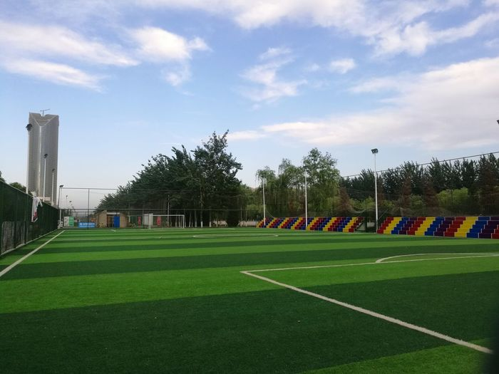Soccer Field Sport Playing Field Goal Post Tree Soccer Sky Grass Green Color Cloud - Sky