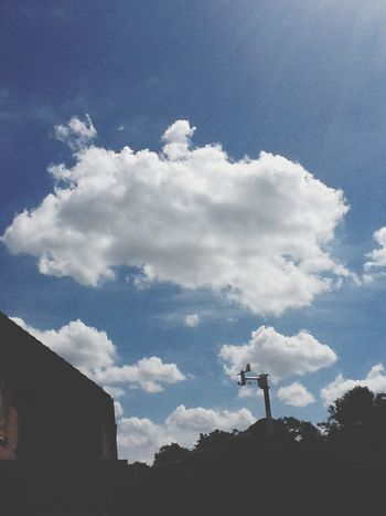 Cloud- Enjoying Life Love Cloud Perfect Day