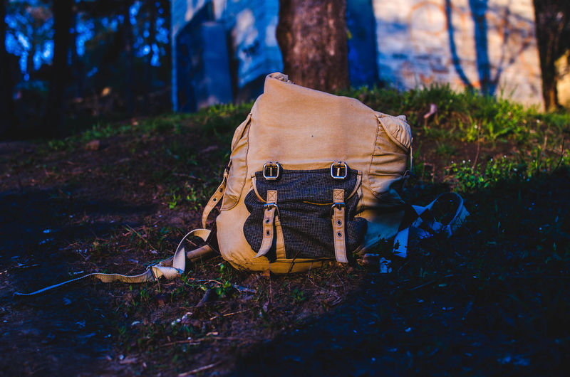 Close-up of backpack in forest