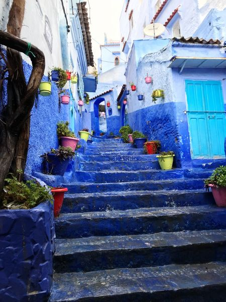 El pueblo azul Northafrica Pintoresque Encanto Casas Arquiectura Africa Morocco Marruecos Building Exterior Steps Architecture Built Structure Steps And Staircases House Day Outdoors No People