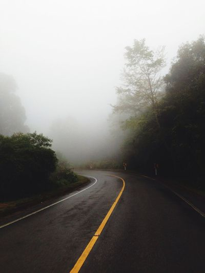 Empty road by trees during foggy weather