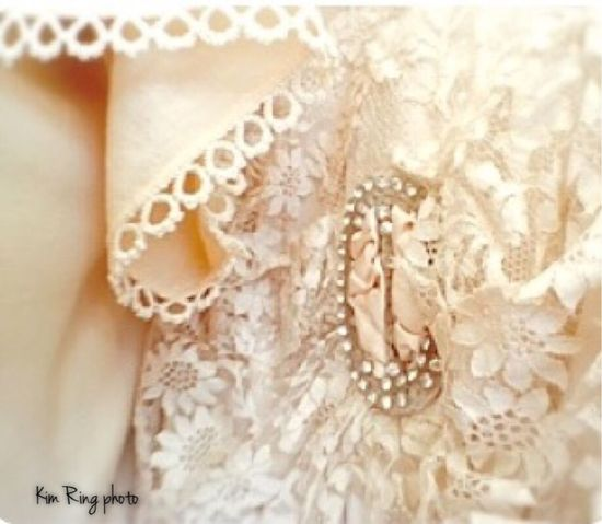 Lace and rhinestones Close-up Pearl Textile Lace Bling Brimfield Flea Market