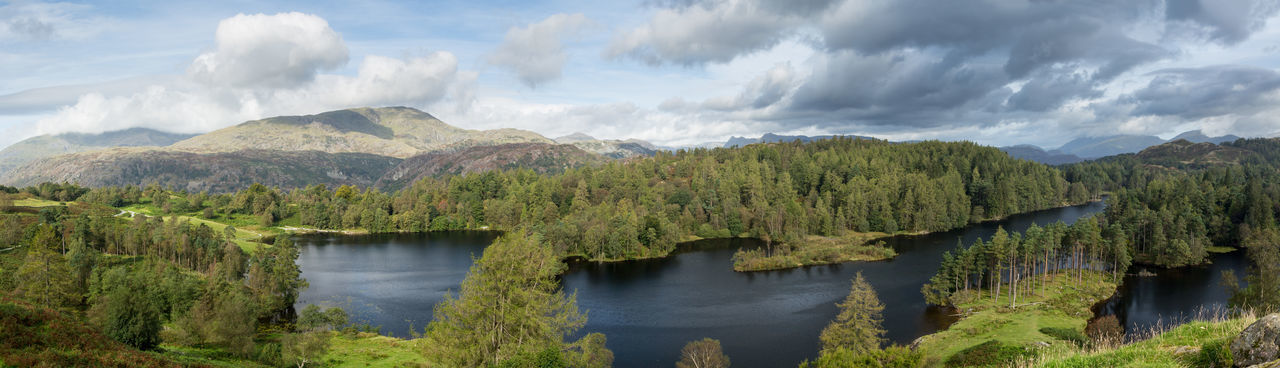 Panoramic view over Tarn Hows in the English Lake District Lake District Lake District National Park Lakeland Panorama Beauty In Nature England English Forest Lake Landscape Mountain Nature No People Outdoors Panoramic Scenics - Nature Tarn Tarn Hows Tranquility Water
