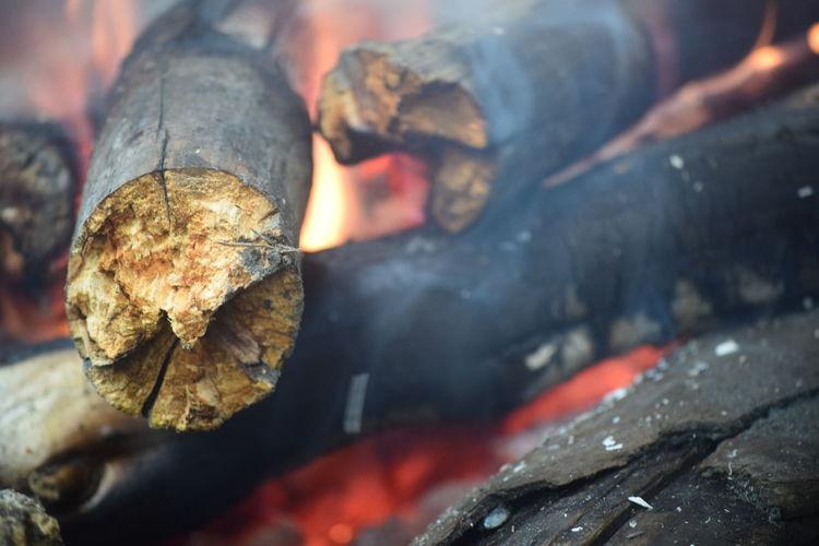Close-Up Of Woods Burning