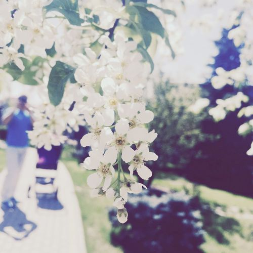 May walks))) Nature EyeEm Nature Lover Flower Spring Running To Happyness
