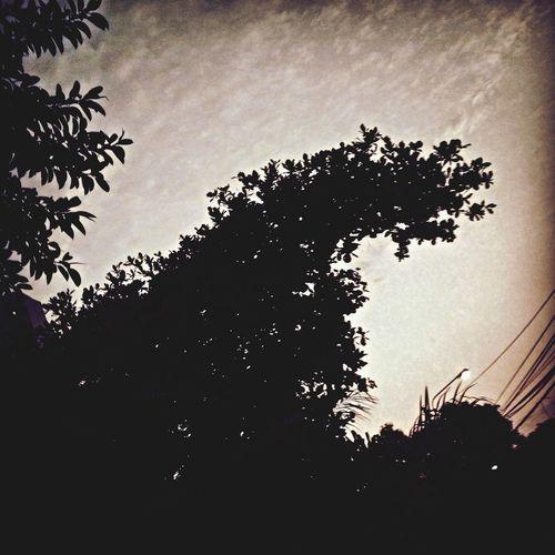Smurf Silhouette Sky Taking Photos