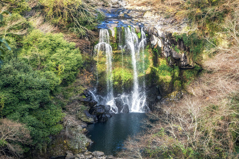Cheonjeyeon Waterfalls in jeju island. viewed from the observatory nearby. Jeju Island, South Korea Beauty In Nature Cheonjeyeon Cheonjeyeon Falls Environment Flowing Water Forest Green Color Idyllic Jeju JEJU ISLAND  Jejudo Korea Korean Motion Nature No People Outdoors Rock - Object Scenics Tranquil Scene Tranquility Travel Destinations Tree Water Waterfall