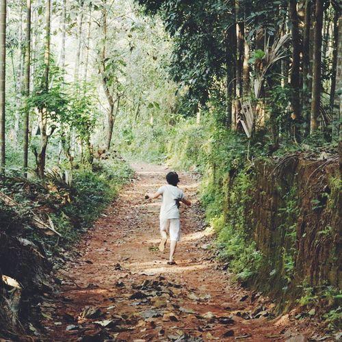 Flee VSCO Vscocam Vscofilter Vscoindia Vscogood Vscophile Path Woods Trees Greenery Kerala Run Portrait Makeportrait Backportrait Younggirl Everydayeverywhere Onephotoaday