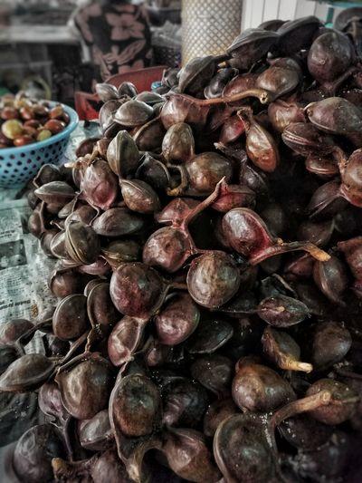 Plant wild fruit Seeds, Nutrition, Food, Health, Healthy, Oil, Sunflower Oil borneo Healthy Eating Market Fruit Borneo Fruit
