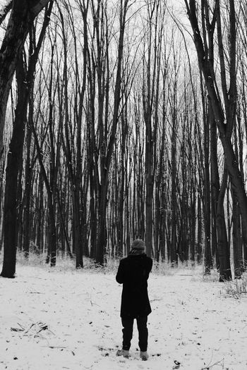 Into the woods Boy EyeEmNewHere EyeEm Nature Lover Nature Warm Clothing Tree Snow Full Length Cold Temperature Winter Forest Snowing Standing Frozen Winter Coat