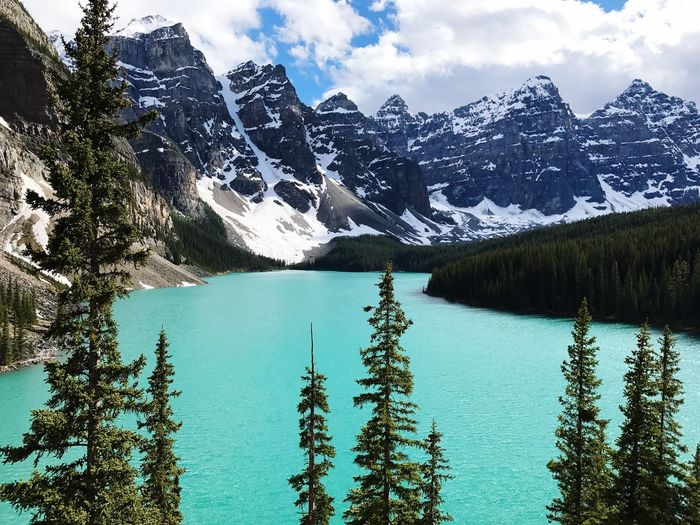 Banff National Park  Canada Water Tree Beauty In Nature Scenics - Nature Plant Nature Sky Tranquil Scene Mountain Cloud - Sky No People Cold Temperature Turquoise Colored