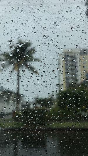 Wet Drop Window