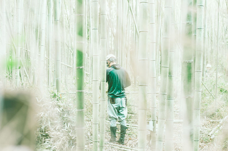 ASIA EyeEm Best Shots Japan Adult Day East Asia Field Forest Grass Green Color Kyoto Leisure Activity Nature Occupation One Person Outdoors People Plant Real Life Real People Rear View Standing Streetphotography Three Quarter Length Tree The Photojournalist - 2018 EyeEm Awards The Traveler - 2018 EyeEm Awards The Street Photographer - 2018 EyeEm Awards