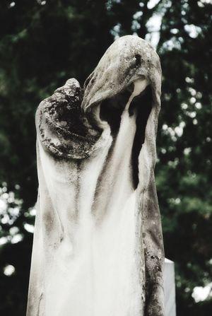 Statue Cemetery Sad Death Mourn Female Woman Vienna Austria Zentralfriedhof Wien