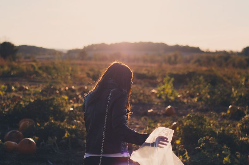 Rear view of woman holding plastic bag while standing on pumpkin field