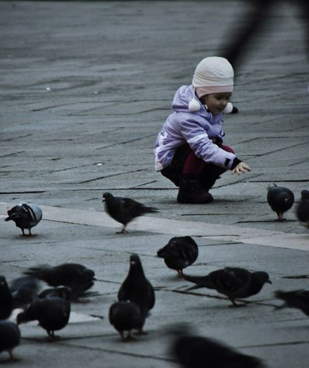 """In youth we learn; in age we understand."" -Marie von Ebner-Eschenbach Kid Pigeons Venice Plazza"