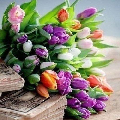первыйденьвесны Пусть принесет весна всем много ярких солнечных деньков, яркого безоблачного неба, тепла, самого отличного настроения и исполнения всех желаний!
