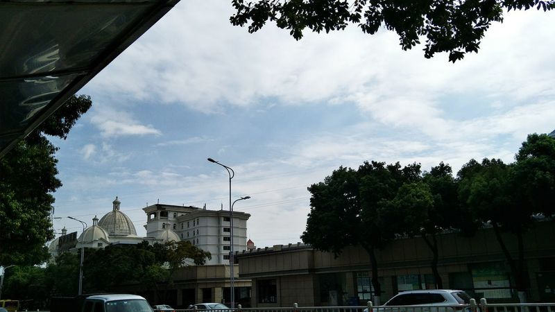 Tree Cloud - Sky Building Exterior Architecture Sky Built Structure Outdoors Day Bird City No People Flying Xiamen China