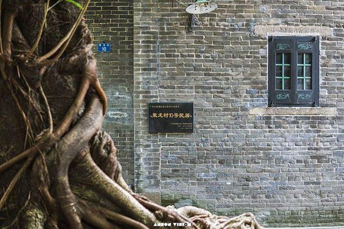 聚龙古村 Guangzhou Canton Exploregz History Street Oldvillage Trees
