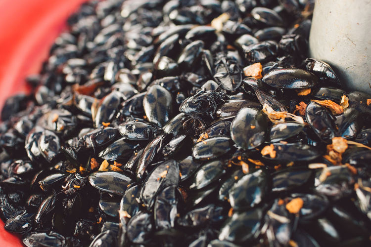 High Angle View Of Mussels For Sale At Market Stall