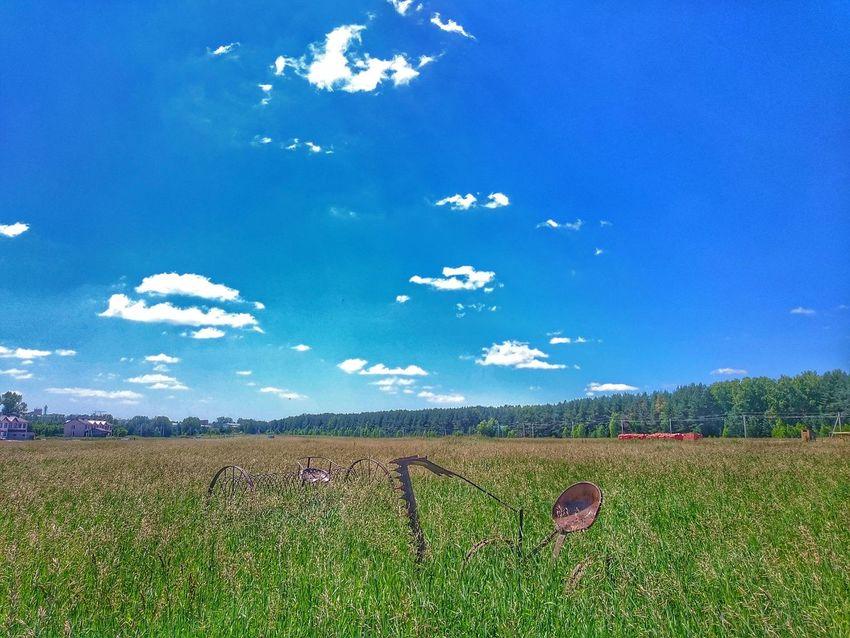 Nature On Your Doorstep Clouds Sky Grass Summer