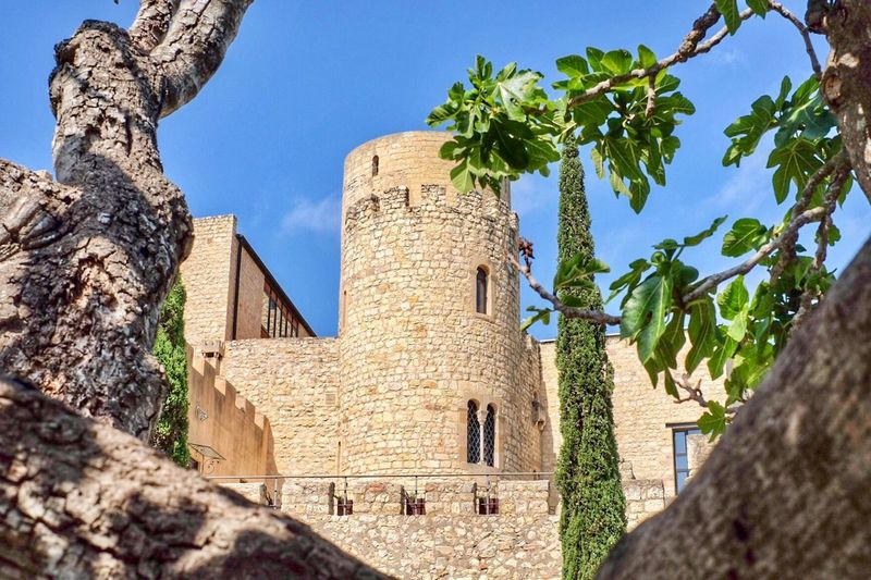 Architecture Tree Built Structure History Building Exterior Low Angle View Day No People Outdoors Ancient Old Ruin Sunlight Travel Destinations Sky España SPAIN Castellet Nature