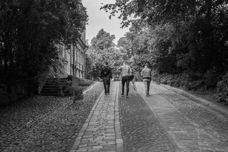 Black And White Photography Black And White Blackandwhite Photography Blackandwhite Walkers Finland Soumenlinna Real People Tree Rear View Walking The Way Forward Two People Day Outdoors Togetherness