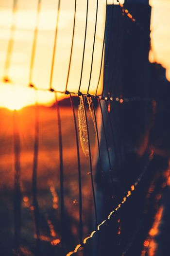 #random #light #nature #sunset #life #skyporn #skylover Seeing the Sights
