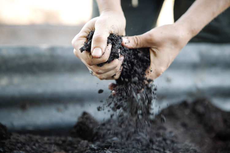 Close-Up Of Man Holding Soil