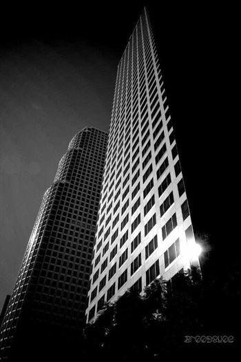 Los Angeles So-Cal Black&white Fortheloveofblackandwhite Sz_buildingshotz