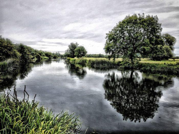 TreePorn Sky_collection EyeEm Best Shots - Landscape EyeEm Best Shots - HDR