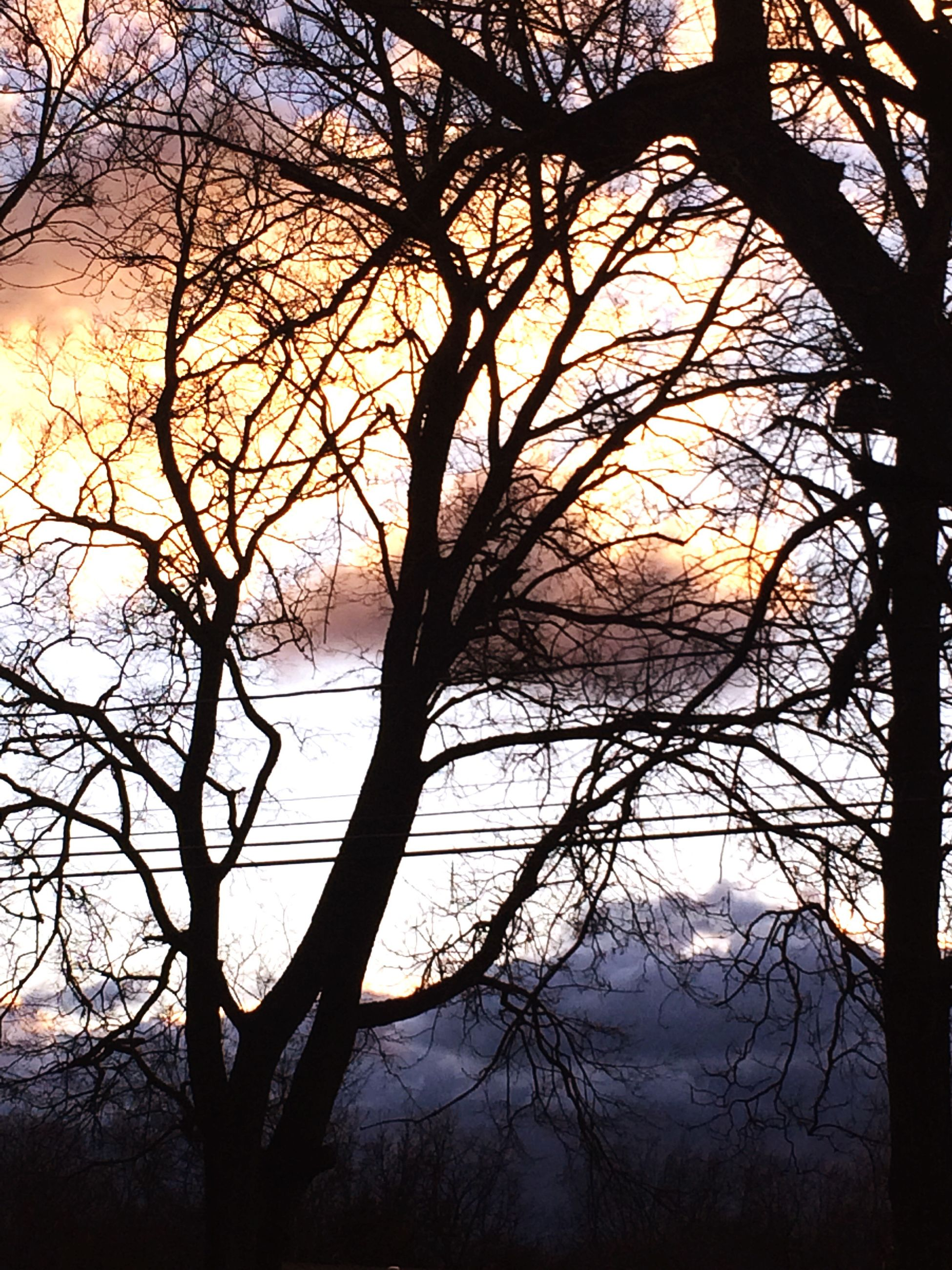 bare tree, tree, branch, water, tranquil scene, tranquility, scenics, beauty in nature, lake, silhouette, nature, sunset, reflection, sky, idyllic, tree trunk, non-urban scene, river, outdoors, no people