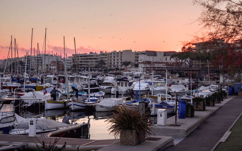 picturesque sunset with yachts at the pier on the coast, Cannes Riviera Architecture Sky Sunset Nautical Vessel Built Structure City Water Building Exterior Harbor Transportation Mode Of Transportation Orange Color No People Building Outdoors Table Sailboat Cityscape Marina Port Cannes Yacht Evening Sky