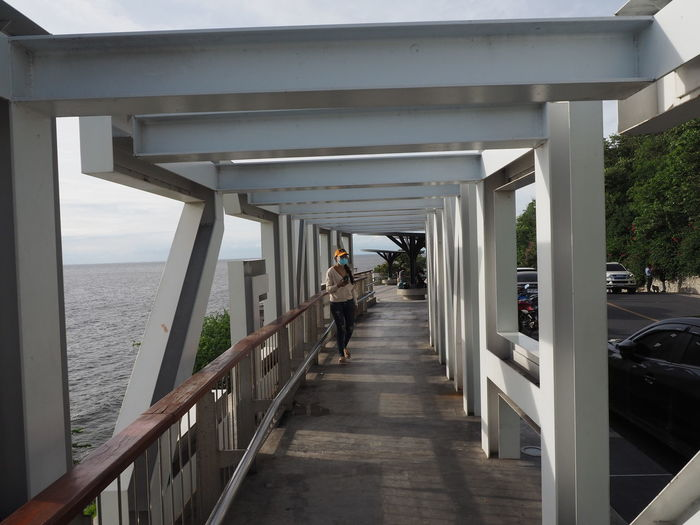 Rear view of man on railing by sea