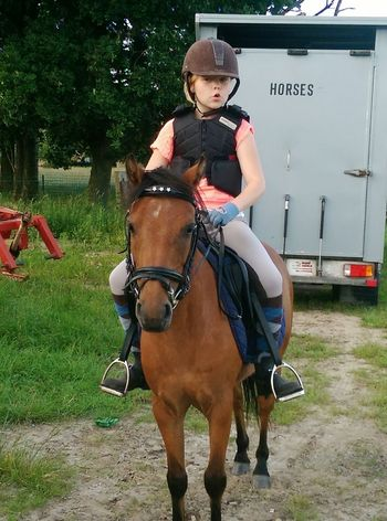 Horse Horse Riding Pony Animal Photography Girl Ponylove Riding Horse Trailer Enjoyment Outdoors Going The Distance Sport Girl And Her Pony