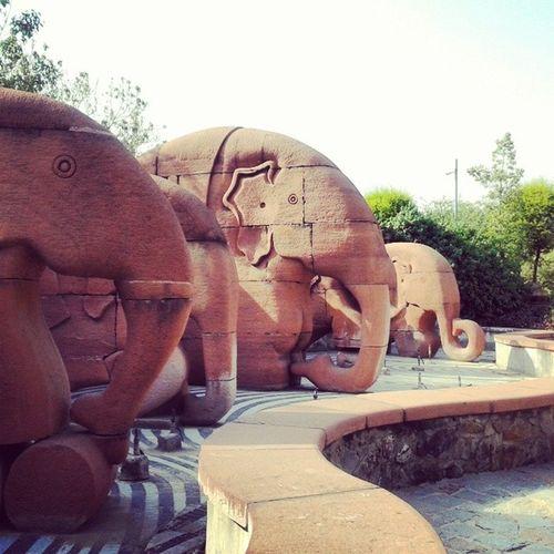 Staytunedtoindia Gardenof5senses Elephants