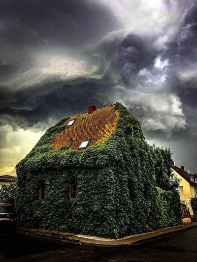 Waiting for the rain Efeu Thunderstorm House Cloud - Sky Sky Nature Low Angle View No People Tree Plant Built Structure Dramatic Sky Outdoors Day Sunset Ominous Architecture