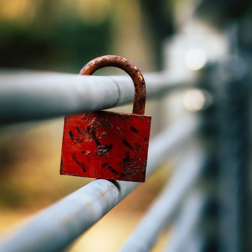 Do Not let your love get rustle... Bridge Schloss Padlock Bridge Padlock On A Gate Rusty Lock Love Lock Lock Close-up Padlock Safety Metal Love Security Focus On Foreground Emotion Love Lock