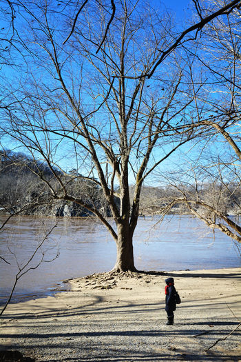 Tree Real People Bare Tree Nature One Person Water Day Sky Plant Leisure Activity Full Length Tranquility Tranquil Scene Winter Trees Wintertime PotomacMD Potomac River Riverside River View