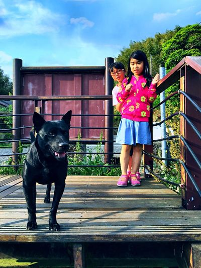 Will the three-legged doggy bite us?🐕 Black Dog Scared Afraid Of A Dog 🐶 Doggy Pets Domestic Animals Mammal Child Canine Dog One Animal Girls Childhood Real People Innocence Outdoors Front View Standing Full Length