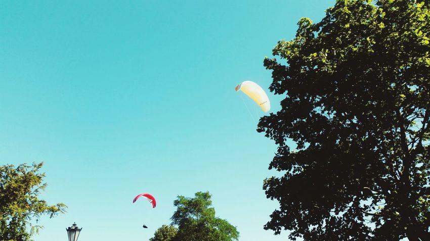 Paragliding Paraglider Paragliding Fun Paragliders Summertime Summer Views Summervibe