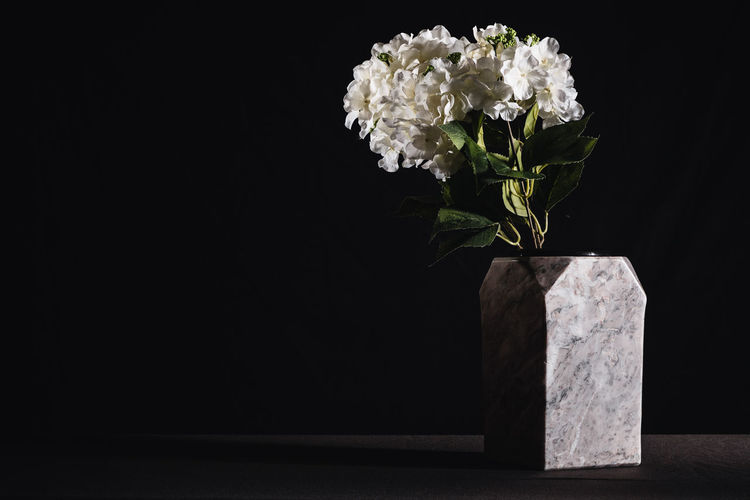 Close-up of white flower vase against black background