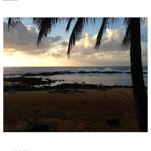 Sometimes Its Just The Place To Be . #hawaii #beach #sharkscove #home