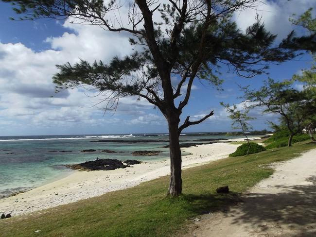 Beach Beauty In Nature Lagon Lagoon Mauritius Mauritius Island  Nature Sea Tourism Tranquil Scene Travel Destinations île Maurice