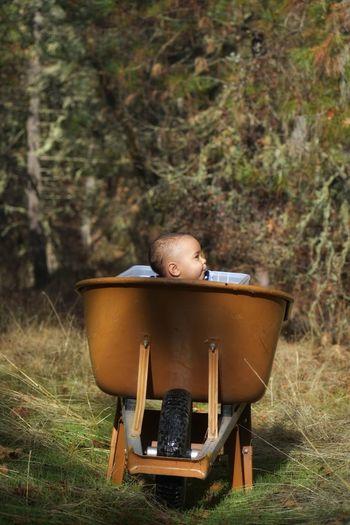 Cute Girl Sitting In Wheelbarrow At Field
