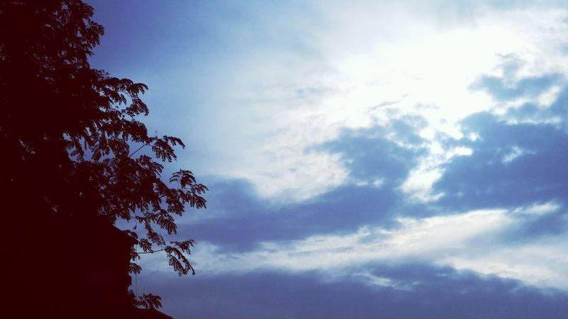 عنيزة Sky And Clouds Sky And Trees Sky Morning Morning Light Morning Sun
