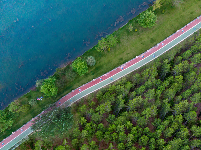 Cerenity Transportation Tree Road Plant Day High Angle View Nature No People Mode Of Transportation Highway Land Road Marking on the move Outdoors Aerial View Marking Motion Green Color Growth Forest Pathway Cycling Path Dronephotography Top View Aeiral View