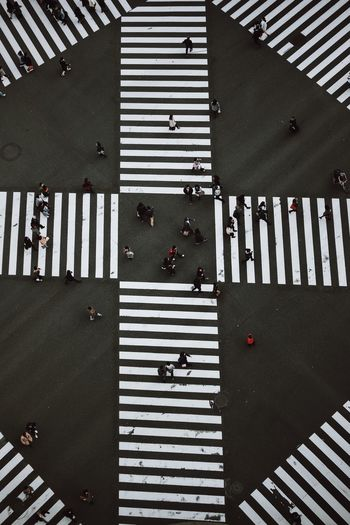 Intersection Japan Tokyo Tokyo Street Photography Traffic Architecture Built Structure City Crossing Crosswalk Day Group Of People High Angle View Indoors  Lifestyles Pattern People Real People Road Road Marking Symbol Traffic Lights Walking Women Zebra Crossing The Architect - 2018 EyeEm Awards