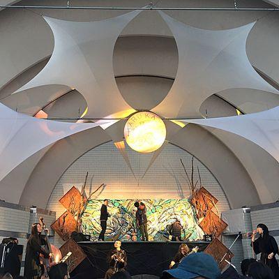 音楽大好きだなあって Yoyogi Park Festival Party Music Festival Geometry Dance 春風