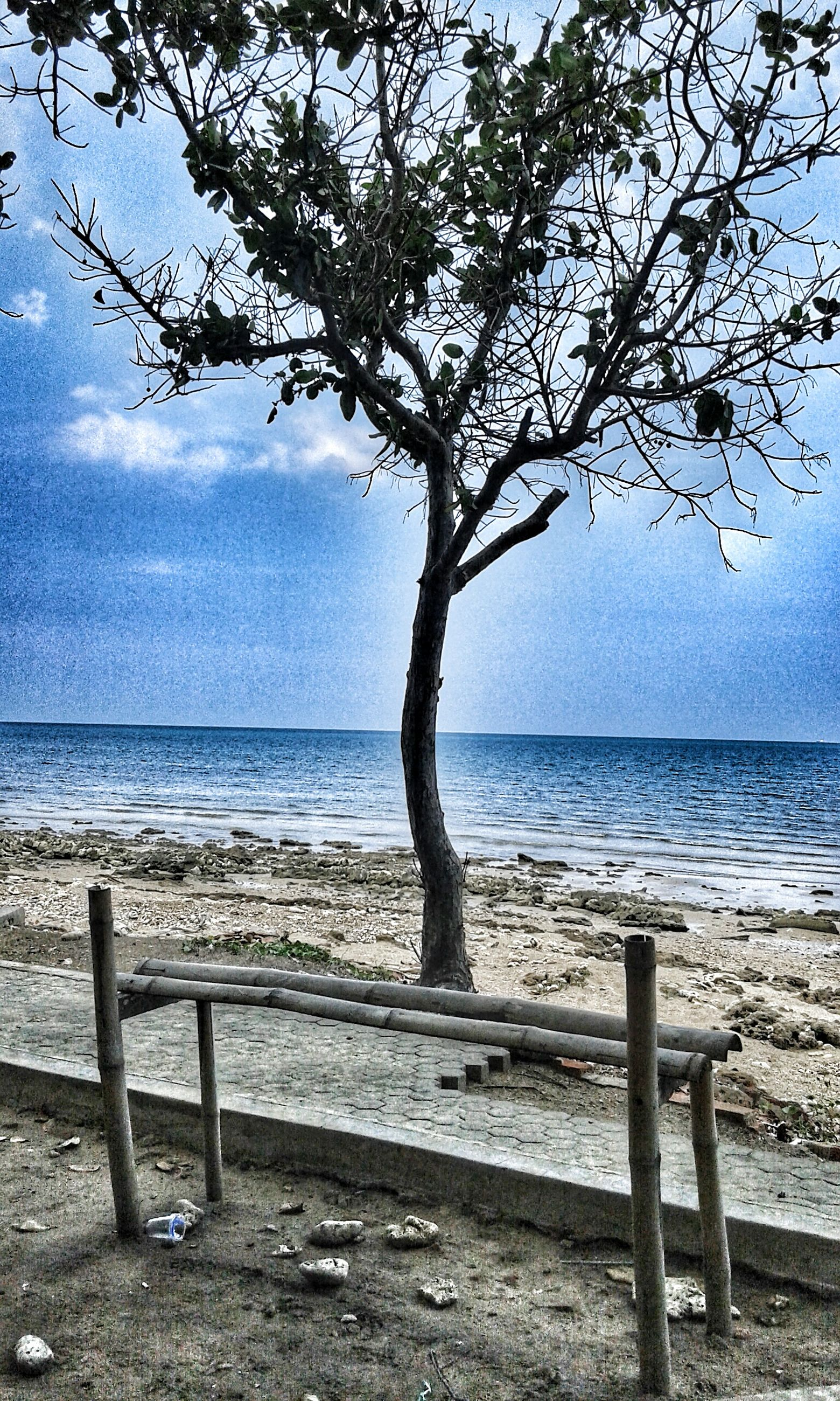 horizon over water, sea, tranquility, water, tranquil scene, scenics, beach, beauty in nature, sky, tree, shore, nature, branch, tree trunk, idyllic, sand, remote, calm, outdoors, non-urban scene